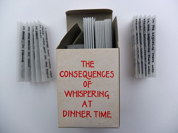 The Consequences of Whispering at Dinner Time is the documentation of a game of